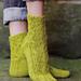 Zostera marina Sock pattern