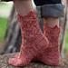 Metopsilus porcellus Sock pattern
