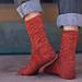 Fucus Aparagoides Sock pattern