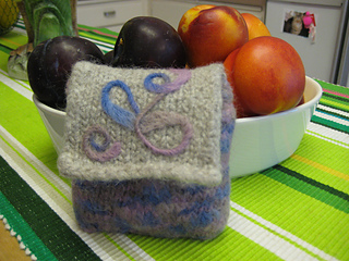 felted ipod case