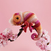 Colour Pop Chameleon pattern