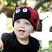 Love Bug Ladybug Hat pattern