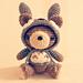 Totoro Hoodie Bear pattern