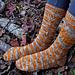 Autumnal Socks pattern