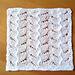 Maidenhair Fern Dishcloth pattern