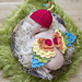 Newborn Bird with Hat/Tieback Options pattern