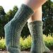 Silver Fir Socks pattern