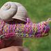 Snail Finger Puppet pattern