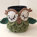 Owl Coffee/Tea Mug Cozy pattern