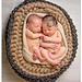 Newborn Basket Photo Prop pattern