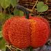 Tosca knit Pumpkin pattern