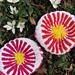 Cherry Bloom Beanie pattern