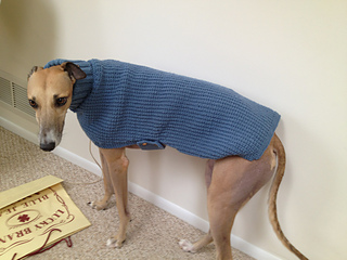 Whippets And Greyhound Sweaters Pattern