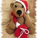 Sammy the Christmas Bear pattern