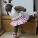 Ballerina Bunny pattern