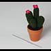 Cactus! pattern