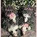 Opossum Bob and Family pattern