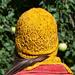 Aurei hat pattern
