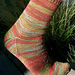Basic shaped arch socks pattern