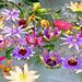 Estonian Blossom pattern