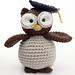 Amigurumi Graduation Owl pattern