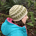 Winter Woods Hat pattern
