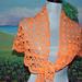 Morpho Shawlette pattern