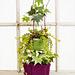 Botanical Bliss Hanging Baskets pattern