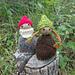 Reversible Gnome and Mushroom pattern