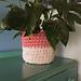 Jute Plant Pot Cosy pattern