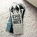 EXO mittens pattern