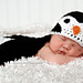 Penguin Photo Prop pattern