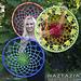 Mandala Dream Catcher pattern