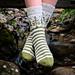 Forest Path Socks pattern