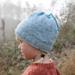 Frost-hat / Frost-lue pattern