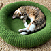 Kitty Bed pattern