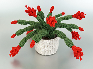 Christmas Cactus.Ravelry Christmas Cactus Pattern By June Gilbank