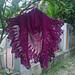 The Purple Pineapple Shawl pattern