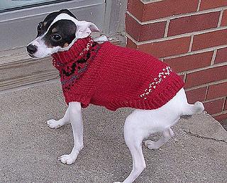 Buddy_sweater