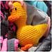Quack Quack: Crochet Duck pattern