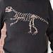 Paleontology for Grown Ups pattern