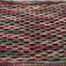 DW Darrell Waltrip Dishcloth pattern