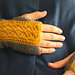 Cedar Glen Mitts pattern