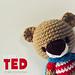 Super TED Amigurumi  pattern