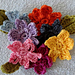 Addenium Flower pattern
