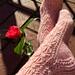 Camellia Socks pattern