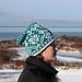 Island Birds Hat pattern