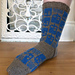 Police Box Socks pattern
