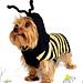 #25 Mans Bee Friend pattern