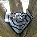 Raccoon Lovey / Security Blanket pattern